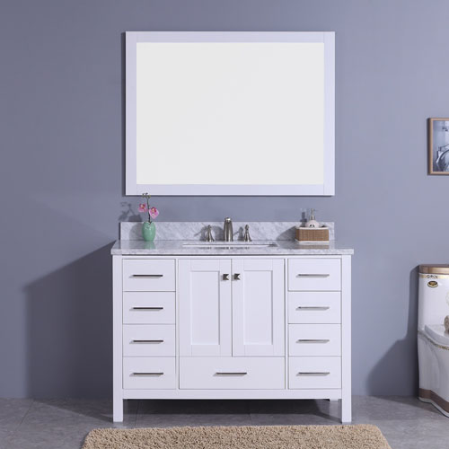 Traditional 48inch Vanity More Storage Space